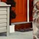 InBin Parcel Box on Front Porch